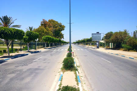 Empty road between the palm trees in Tunisia, El Kantaoui Sousse 写真素材