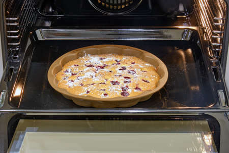 Berry pie with strawberries and jam baked in the oven in the home kitchen Imagens