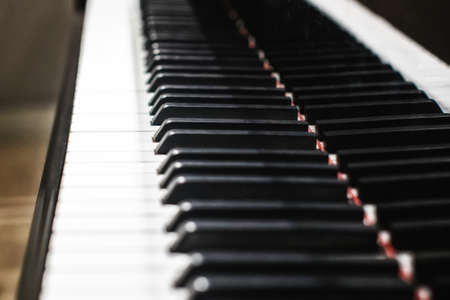 Piano keys. The big concert a musical instrument. Black and white piano keys.