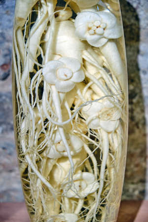 Ginseng root in a glass jar, close-up
