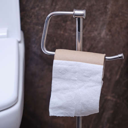 An empty roll of toilet paper on the stand. Concept of finished white toilet paper