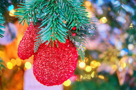 Red mitten with a branch of mistletoe hanging as a decoration on a green Christmas tree, close-up