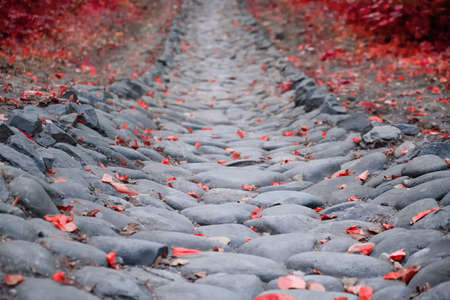 Background of boulders walkway with fallen red autumn leaves