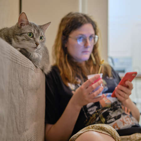 Gray cat watching TV on the sofa next to a woman, close-up portrait