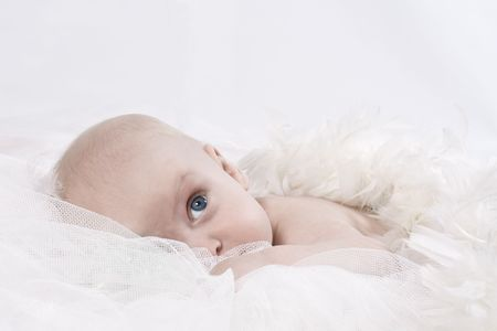 Angelic blue-eyed baby with white feather wings pensivly look out from his soft bed