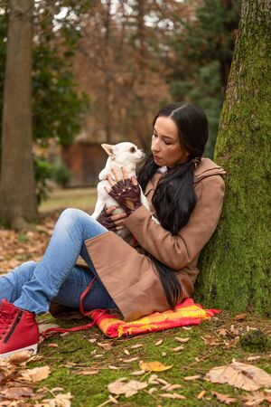 A woman sitting in a Park with her pet dog Chihuahua Reklamní fotografie
