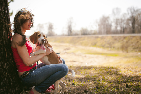 Young pet dog breeds beagle walking in park outdoors. woman carefully walks puppy, plays and tranitsiruetsya, sits with pet in an embrace under tree on grass in woods in clearing Stock Photo