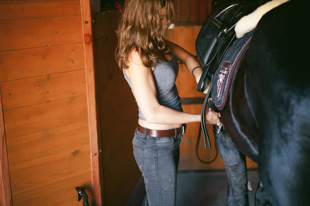 woman wears a saddle horseman Friesian horse in the stables on the farm, taking care of purebred pets