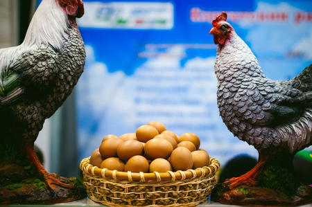 Chicken eggs in a basket, chicken sculptures, attracting consumers to the commodity of agriculture Standard-Bild