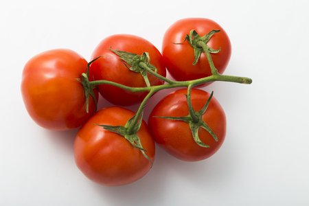 Fresh red tomatoes on a branch on a white background
