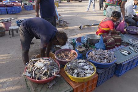 GOA- INDIA-MARCH-17 : auction of fish at GOA wholesale fish market,  INDIA, Goa,17 MARCH, 2017