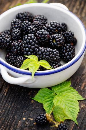 refreshment: Fresh organic blackberries in a bowl