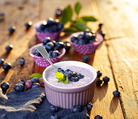 a seed: Blueberry chia seed pudding