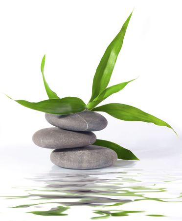 幸運の竹と禅の石