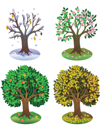 crone: Four seasons of year