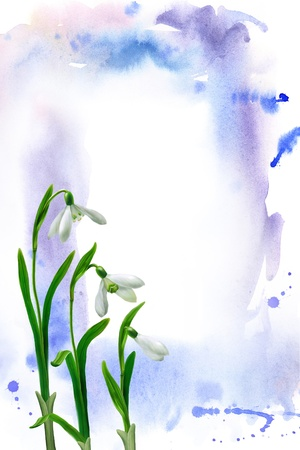 galanthus: Watercolor blots and snowdrops - bitmapped illustration