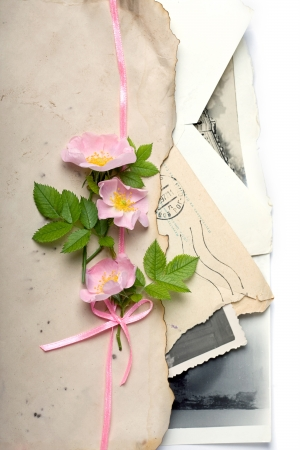 dog rose: Bouquet of a dog rose flowers with the retro letters and photos