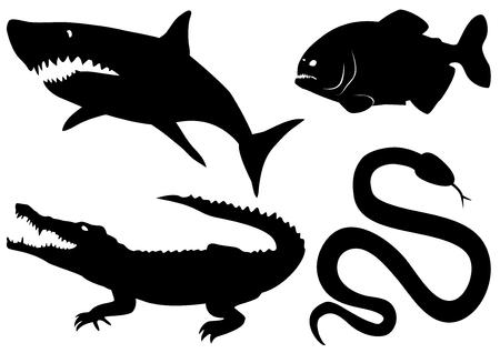 위험한 육식 동물을 설정하십시오 - 악어, 피라니아, 상어, 뱀 일러스트