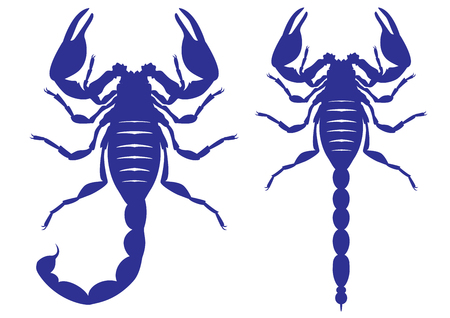 star tattoo: Set of silhouettes of a scorpion