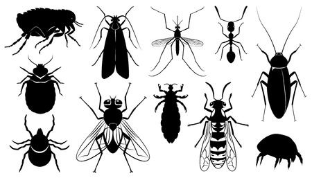 Set of the harmful,dangerous, infection carriers, stinging and parasitizing insects - mosquito, fly, wasp, ixodic tick, bed bug, moth, dust tick, flea, ant, cockroach, louse Illustration