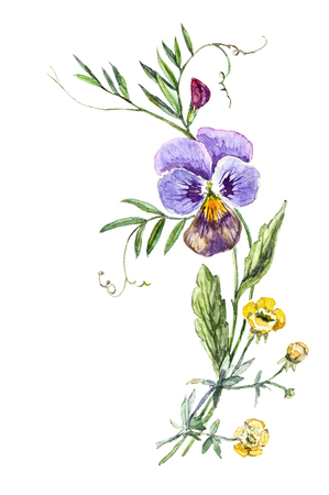 johnny: Watercolor bouquet of flowers with pansies