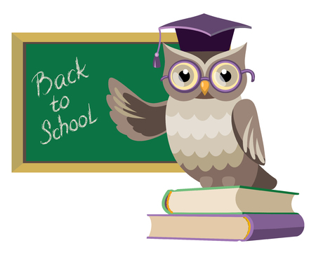 owl in the graduate's cap on the books with blackboard