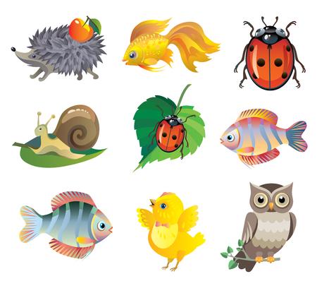 Set of vector cute animals: hedgehog, fish, goldfish, snail, ladybug, chick