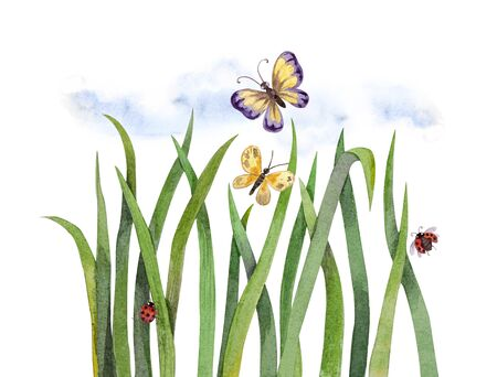 Green grass and butterflies. Watercolor illustration, isolated on a white background