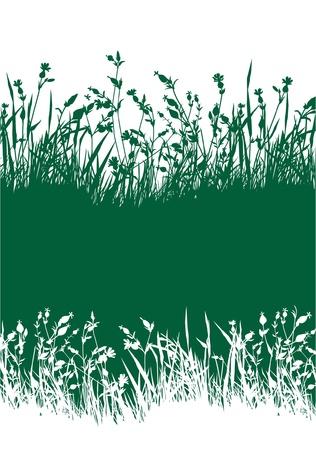Flowery prairie horizon papier peint Banque d'images - 16335030