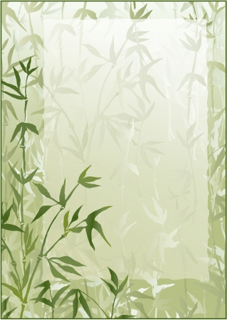 japones bambu: Bosque de bambú marco vector