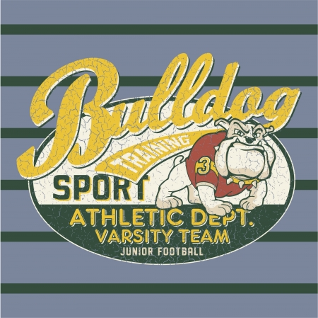 sport wear: Bulldog football team