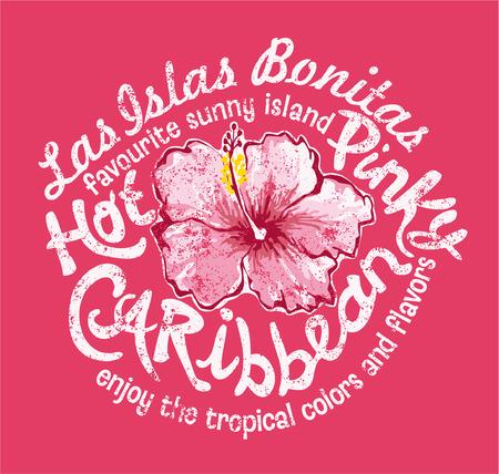 Ilha do Caribe com hibiscus