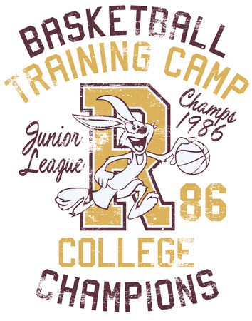 Rabbit basketball training camp, print for boy sportswear in custom colors, grunge effect in separate layer Illustration
