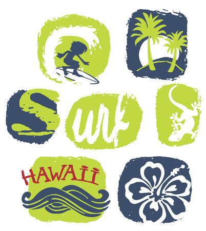 women s clothes: Surfing Hawaii Vector print for children wear