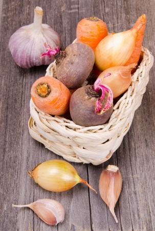 root vegetables: Verdure e ortaggi a radice in un cesto