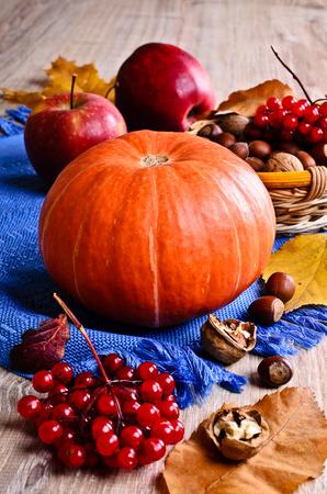 Orange pumpkin surrounded by nuts, apples, berries of viburnum and dry leaves
