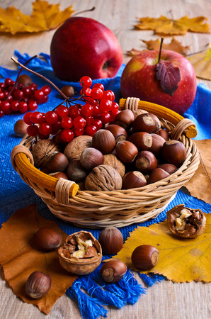 Walnuts and hazelnuts are in a wicker basket on the background of dry leaves, viburnum berries and apples photo