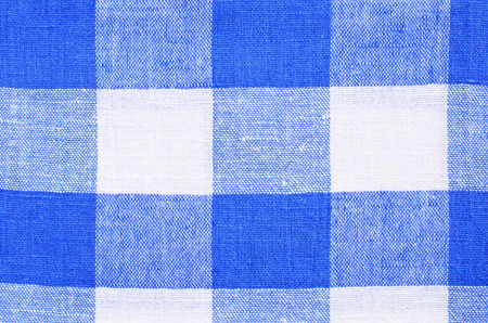 The background fabric in white and blue checks