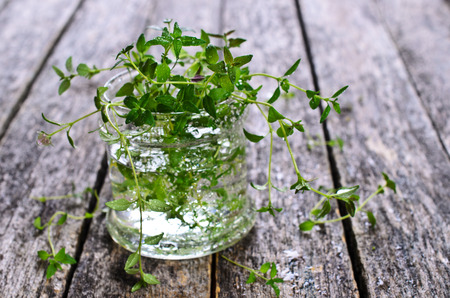water thyme: Sprigs of raw thyme with water drops in a glass container on a wooden surface