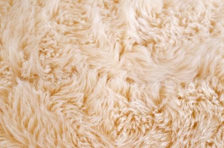 animal fur: Background of beige animal fur. Selective focus. Stock Photo
