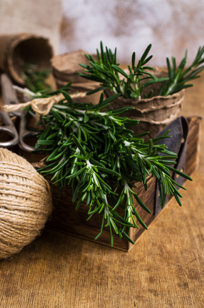 Branches of raw rosemary on a wooden background box and peat pots. Selective focus. Stock Photo