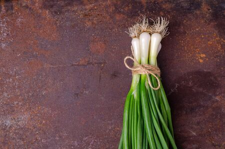 Green onion leaves on an old rusty background. Design concept. Selective focus.
