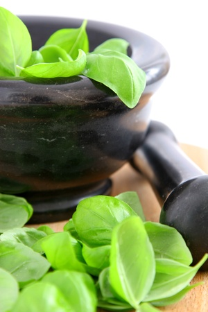 Fresh basil Stock Photo - 12457055