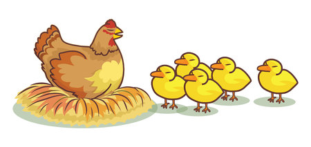 egg roll: hen and some chick