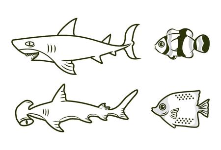 clownfish: shark fish clownfish outline vector