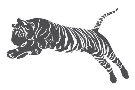 línea de tigre
