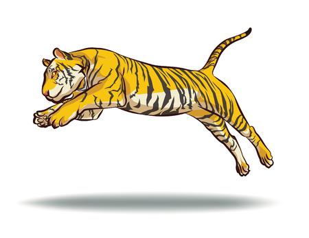 tigre salto aislado en el fondo blanco del vector