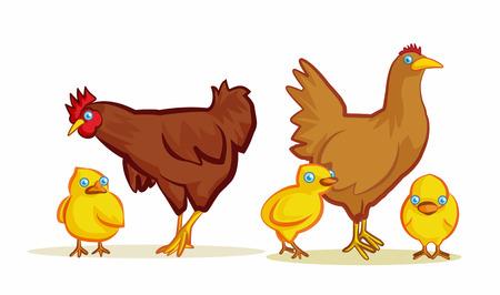 chicken family: chicken family cartoon vector