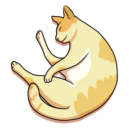 bombay: cat was sleep happy time vector Illustration