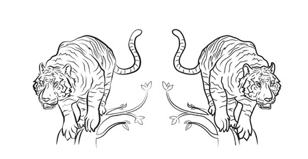 mountain lion: tiger outline jumping action Illustration
